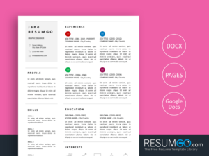 EIRENE - Free 3 Columns Resume Template - ResumGO