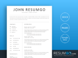HEBE - Free Clean Professional Resume Template - ResumGO