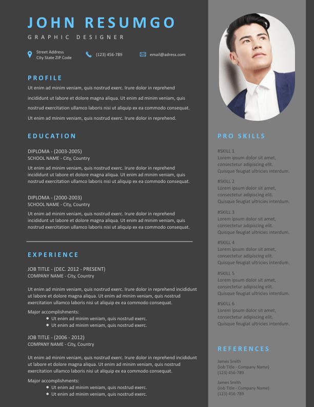 THEMIS - Free Resume Template - ResumGO