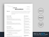 TYCHON - Free Classic Modern Resume Template - ResumGO