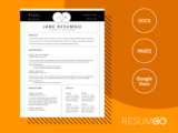 ALEX - Free Venn Black Header Resume Template - ResumGO