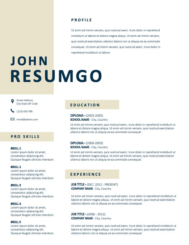 SOHO - Free Clean 2-Column Resume Template