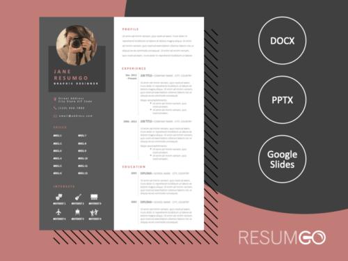 FRANKIE - Free 2-Column CV Template with Gray Left Sidebar - ResumGO