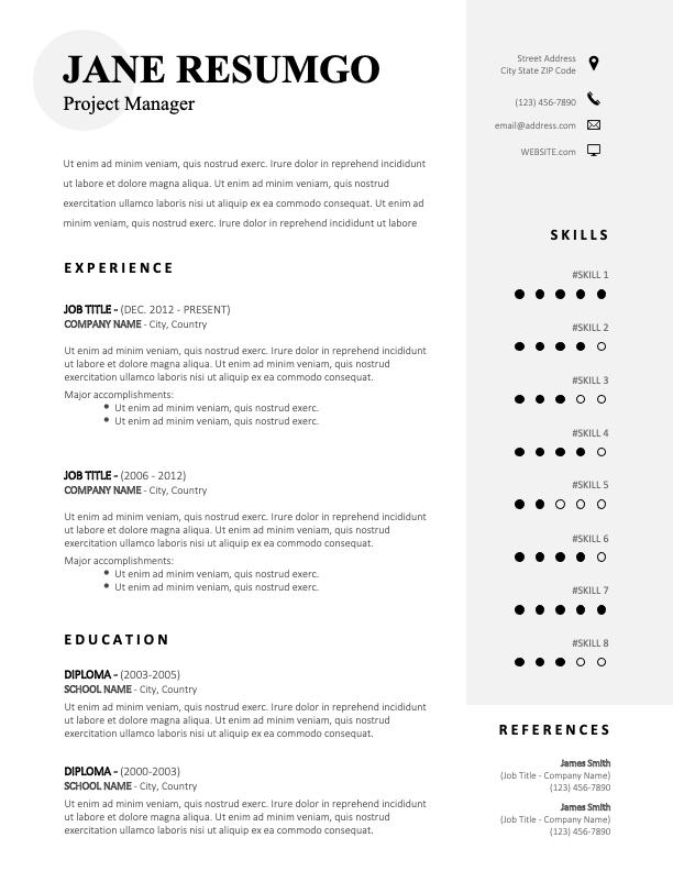 MURPHY - Free Sober CV Template With a Gray Vertical Banner
