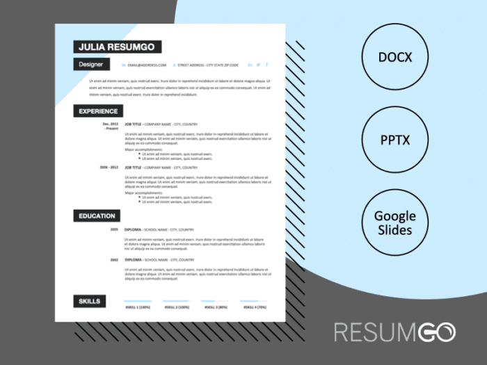 PERRY - Free CV Template With a Sky-Blue Triangle in the Top Left Corner - ResumGO
