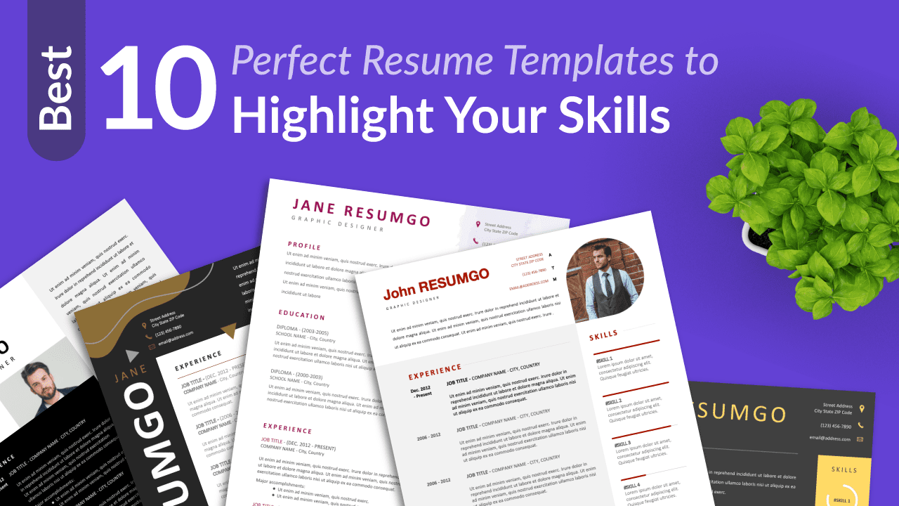 Best Free Resume Templates to Highlight your-Skills
