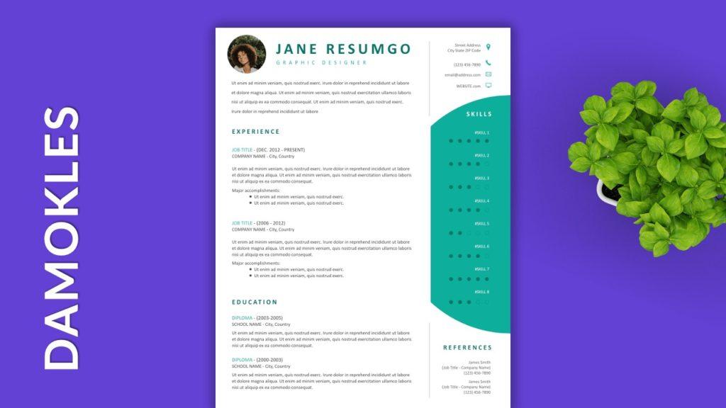 DAMOKLES - Free Resume Templates to Highlight your Skills